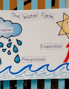 water cycle resources and activities printable labels teach junkie also fast free rh teachjunkie