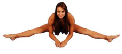 Image result for Long Adductor Stretch