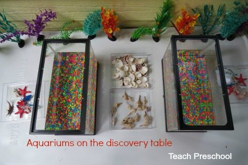 Aquariums on the discovery table