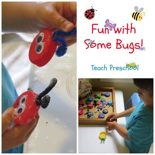 Fun with some bugs!