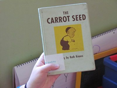 Exploring carrots and a carrot seed book blog linky