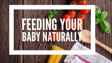 Photo of A Book on Feeding Your Baby Naturally