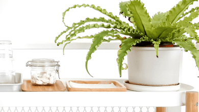 Photo of Spring Cleaning: Some Tips and Products for Moms