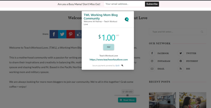 QUID payment options for bloggers to monetize on your blog