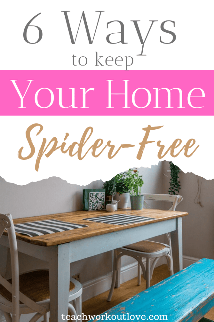 6-ways-to-keep-your-home-spider-free-teachworkoutlove.com-TWL-Working-Moms