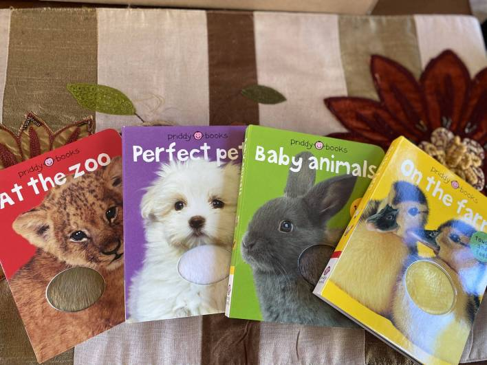 sensory books for developmental milestones