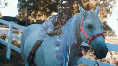 Photo of 10 Benefits of Horse Riding for Children