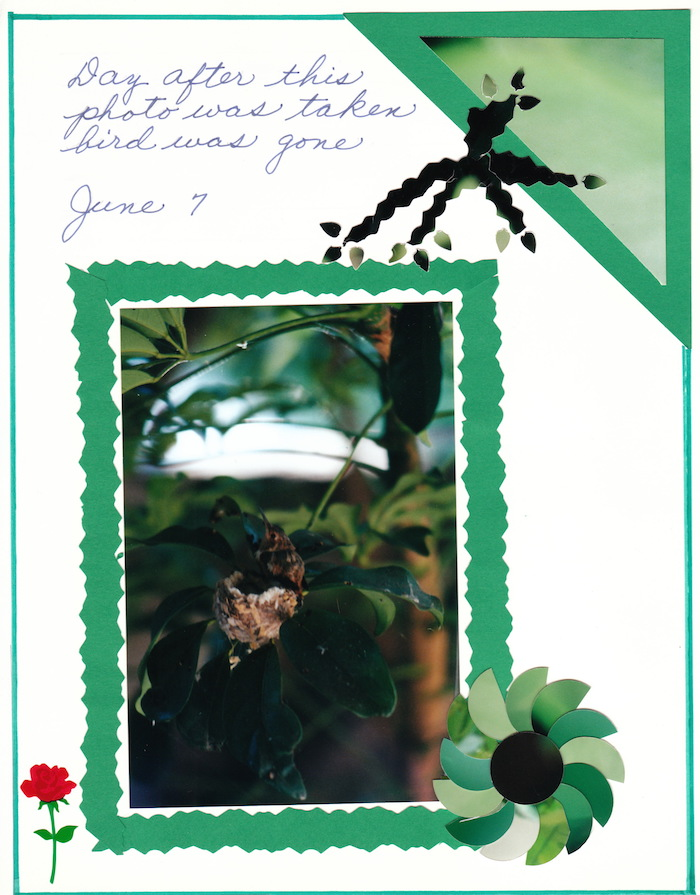 2000 Hummingbird_0012