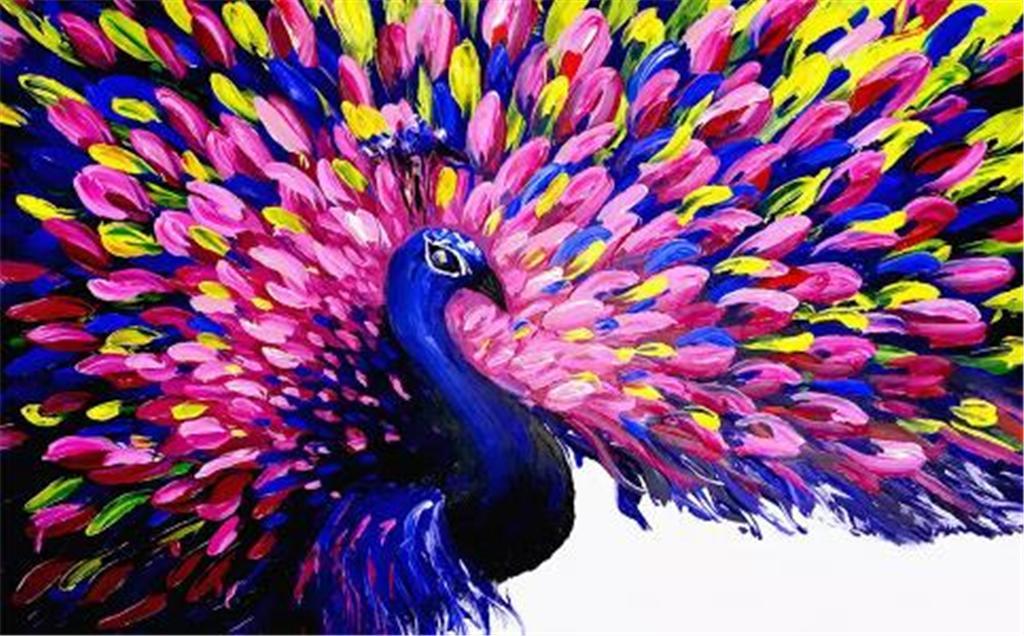 beautiful colorful peacock 1024x636