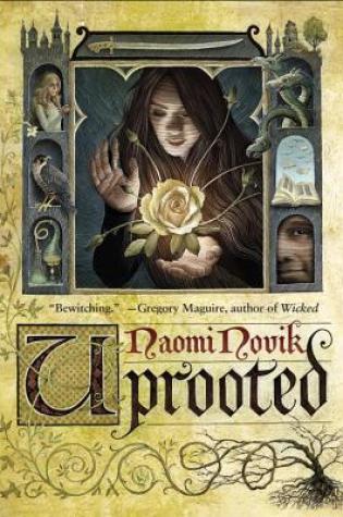 Review: Uprooted, Naomi Novik