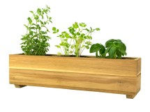 Teak Herb Planter Box