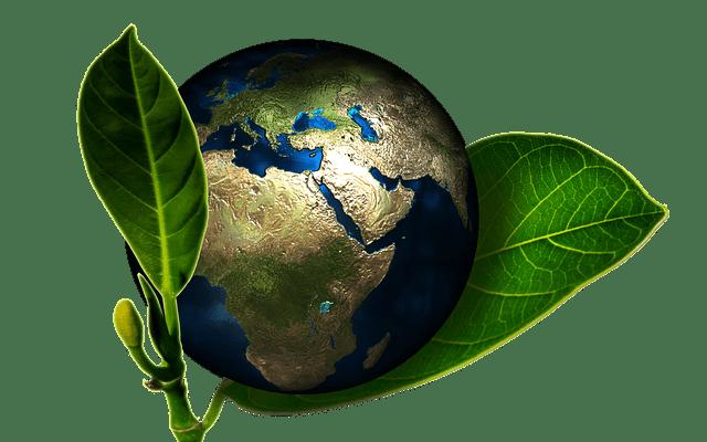 Global Peer to Peer Value Exchange