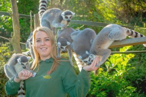 Hand washing is vital to prevent cross contamination at Dudley Zoo