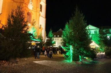 Winterwald-Fulda-Team-Aulich- 2017-04-02-09