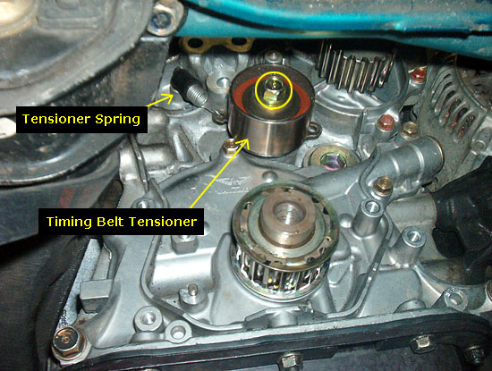 Acura Legend Timing Belt