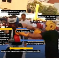 Newton's Laws of Motion and Boxing
