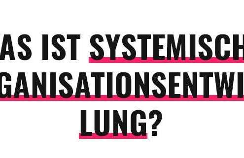 Was ist systemische Organisationsentwicklung?