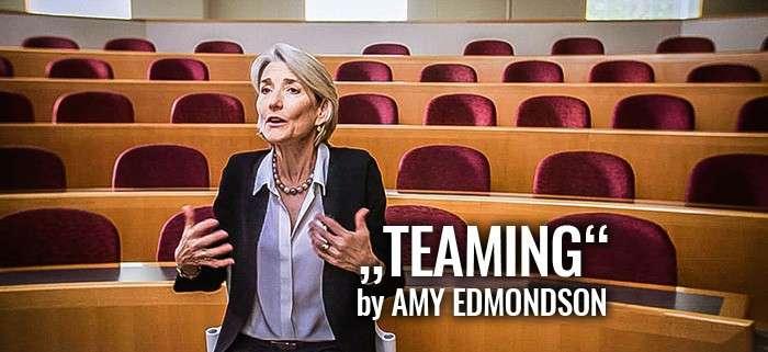 Teaming vs. Teamwork: Willkommen im nächsten Level!