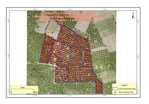 Post disaster coconut tree damage assessment using multi temporal UAV images