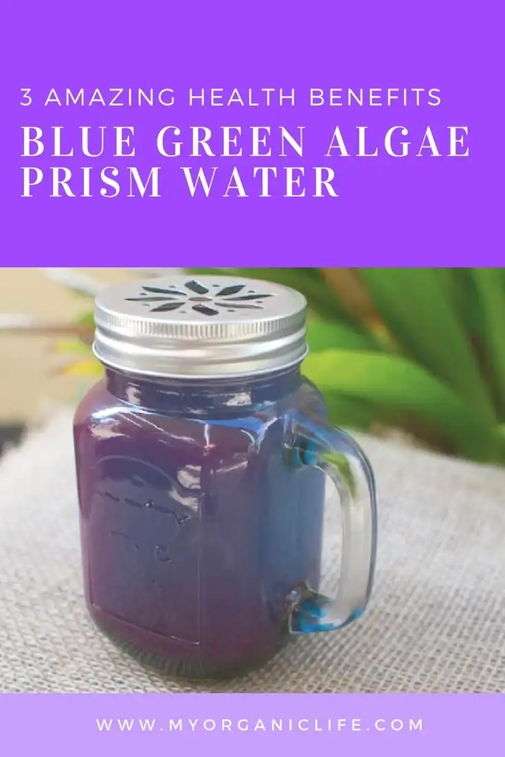 top 3 benefits of blue green algae