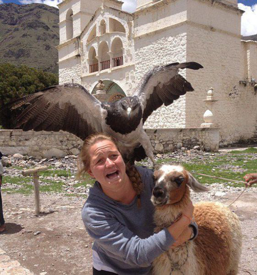 Woman llama attacked by Hawk Bad Family Portraits, Bad Family Photos, Ellen, funny family photos, worst family pics, funny pictures, awkward family photos, wtf, ugly people, stupid people, crazy people, people of walmart
