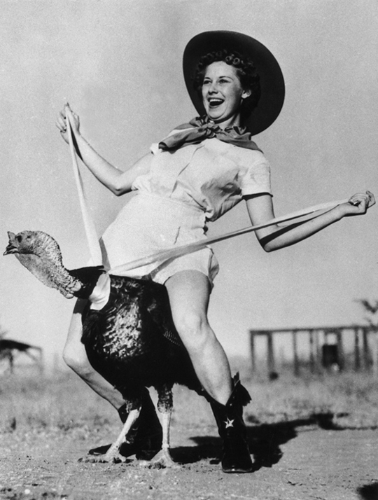 Aunt Celia always loved a good gobbler between her legs.   Vintage Woman Riding Turkey Bad Family Portraits, Bad Family Photos, Ellen, funny family photos, worst family pics, funny pictures, awkward family photos, wtf, ugly people, stupid people, crazy people, people of walmart