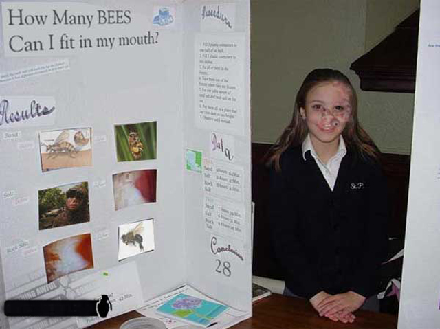 How Many Bees ~ 36 Funny School Science Fair Projects!