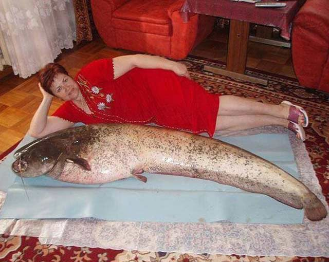 Lady Laying with Fish – Sexy Fails Bad Glamor Shots Dating Sites Profile Pics Awkward Family Photos