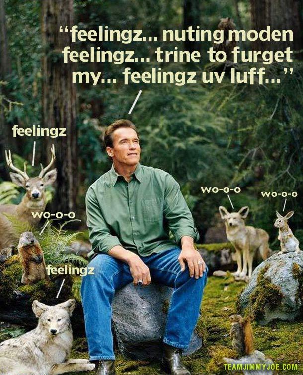 feelSchwarzenegger Feelings ~ 16 Funny Pics & Memes