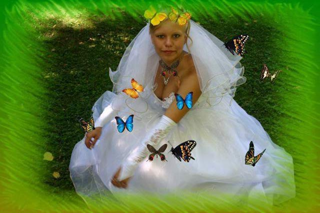 Russian Bride & Butterflies ~ 14 Funny Wedding Photos