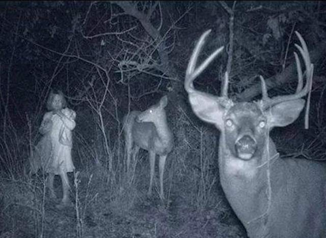 Girl caught on deer cam ~ 25 Creepy Photos