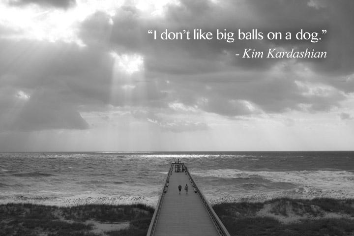 Inspirational Quotes: Dumb stupid things Kim Kardashian said> I don't like big balls on dogs.
