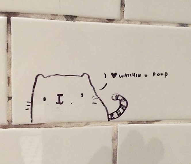 Come Meet Me In The Bathroom Stall: 19 Examples Of Funny & Inspirational Bathroom Stall Poetry