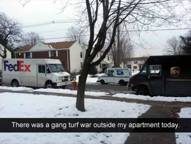 Image of: Funny Animal Funny Snapchats Fedex Ups Trucks Gang Turf War Team Jimmy Joe 34 Funny Snapchats From The Quickwitted Creative Team Jimmy Joe