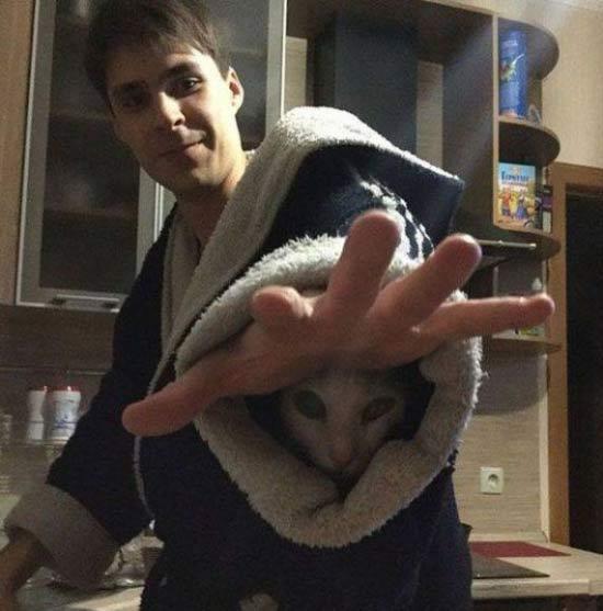 Funny pics~ cat up man's bathrobe sleeve