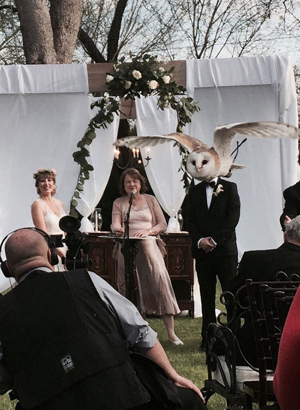 perfectly timed photos ~ wedding, groom with owl head
