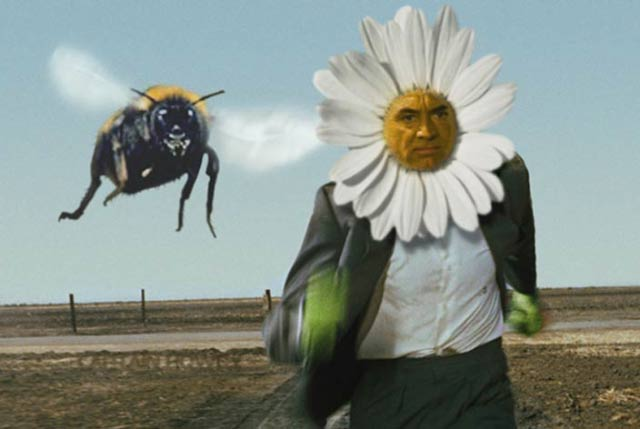 33 Funny Pics~ north by northwest bee