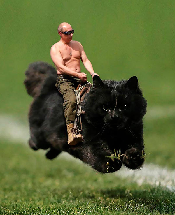 33 Funny Pics of the Day ~ man riding a cat