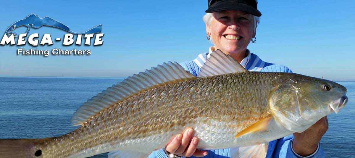 Mega-Bite Fishing Charters Biloxi, MS - Charter Fishing Biloxi