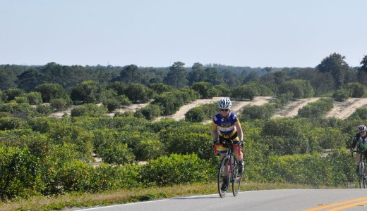 Pascale Lercangee at the Bike Sebring 24 race event
