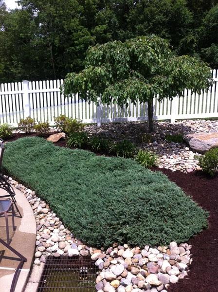 residential landscaping eastern