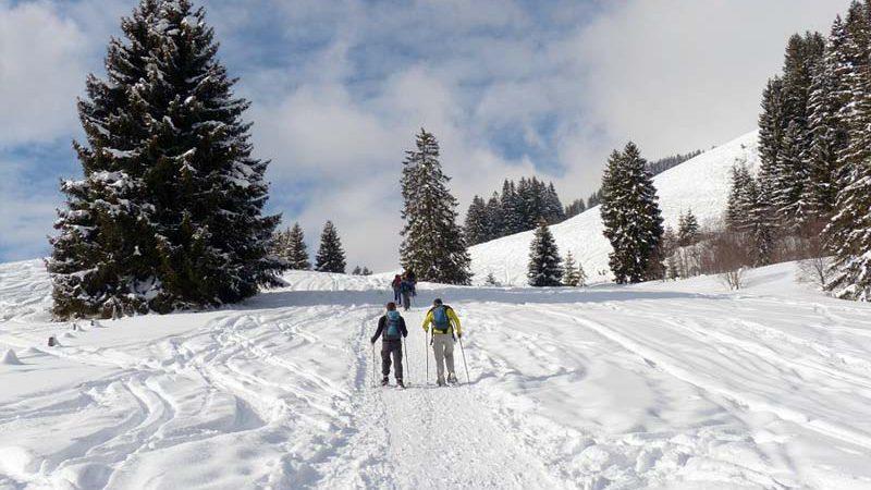 Schneeschuh Teamwanderung