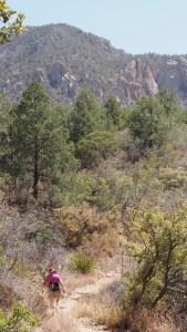 Photo of Chisos Basin Loop Trail