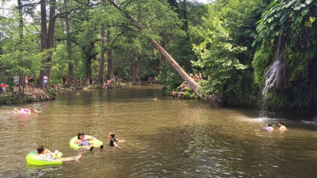 Photo of tree swing over the swimmin' hole