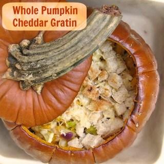 Whole Pumpkin Cheddar Gratin   The Recipe ReDux