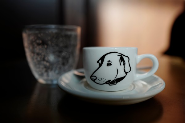 Doggy cup