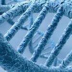 El disco duro del futuro puede estar basado en el ADN