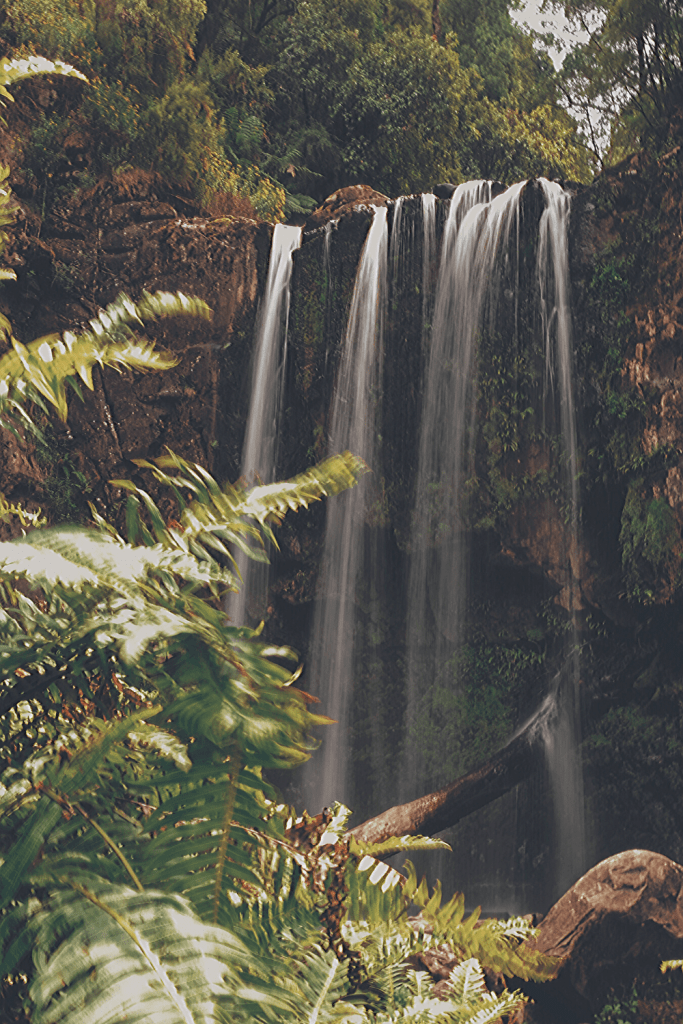 There are numerous waterfalls to choose from: make sure you add one to your Great Ocean Road itinerary