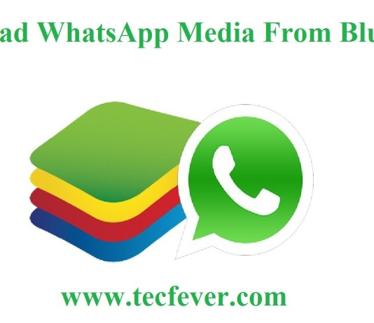 Its Easy To Download WhatsApp Media From Bluestacks