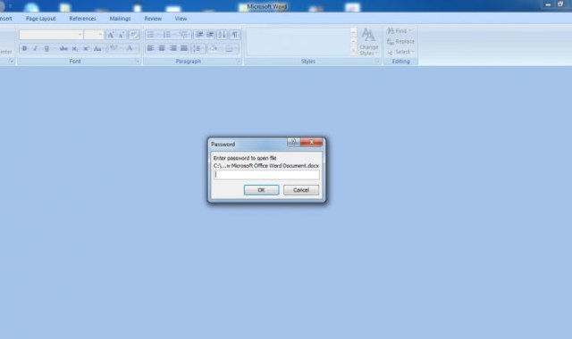 Password Protect MS Office Files5
